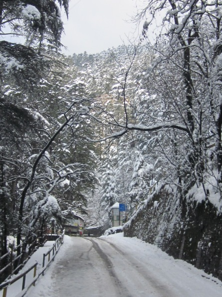 Another Photograph Snow SHimla